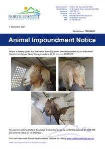 impoundment notice goats mt perry