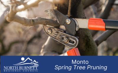 Monto Tree Pruning